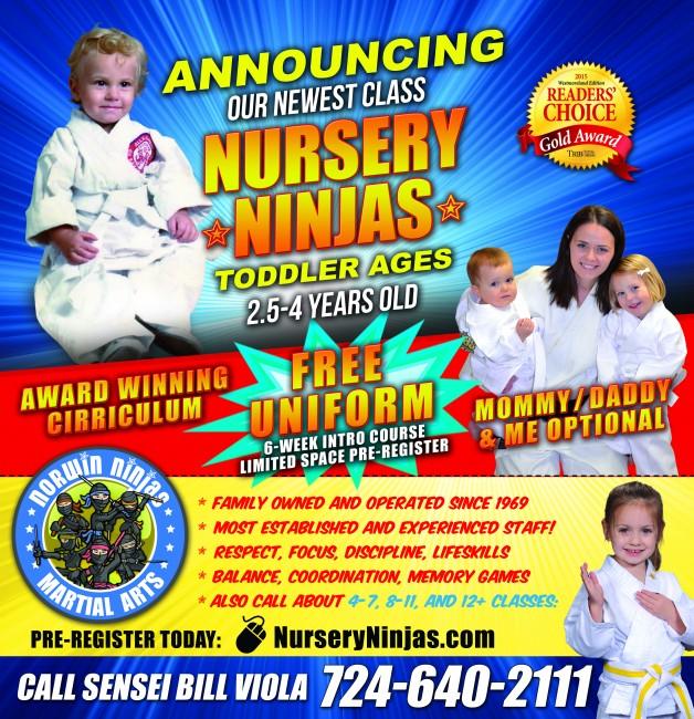 nursery ninjas 2-3 year olds